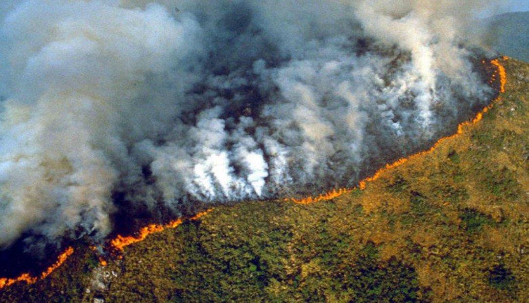Los incendios en la selva amazónica de Brasil aumentaron notablemente en  julio