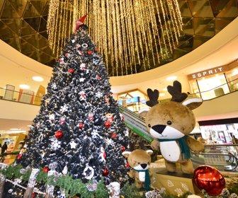 3fe49470b8e Iluminación LED alumbra la Navidad del comercio con ahorro energético de 80%